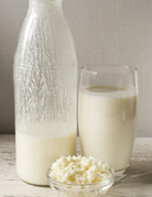 Class:  January 5th - Kefir and Cultured Friends