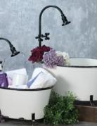 Planter - Antique Bathtub