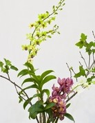 Class:  January 12th - Ikebana in the New Year