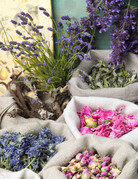 Class:  February 16th ~ Dried and Preserved Flowers and Herbs