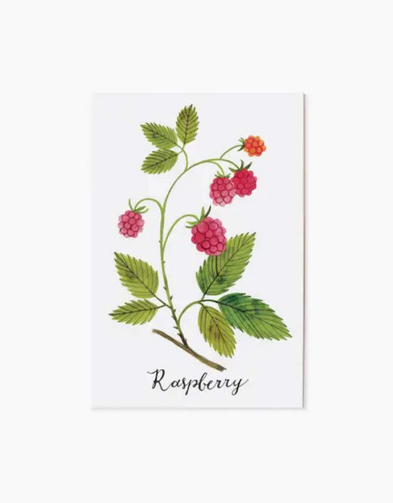 Oana Befort - Raspberry Postcard