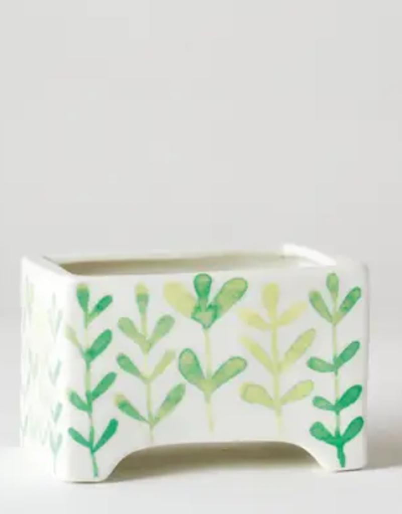 MINIATURE Cacti Garden in Angus & Celeste MINI Ceramic Planter