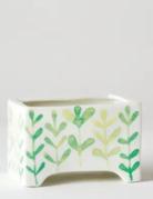 Miniature Cacti in Angus & Celeste Ceramic Planter