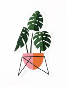 Amber Leaders Designs - Monstera Plant Sticker