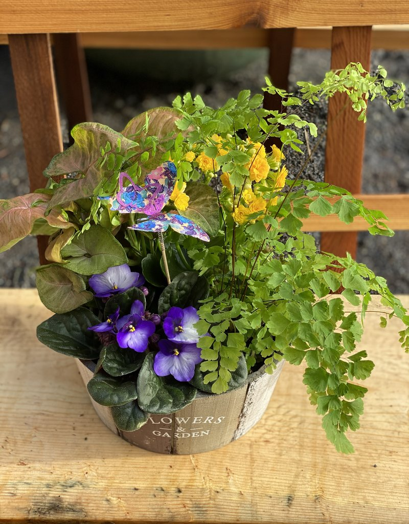 "8"" Plant Garden in Wooden Planter"