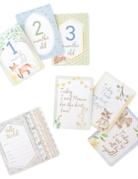 Itzy Ritzy Baby Itzy Milestones Cards