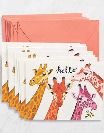 "Waste Not Paper ""Hello"" Boxed Cards Set"