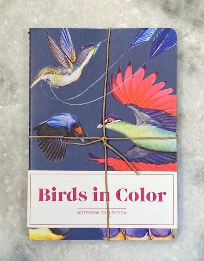 Chronicle Books Birds in Color Notebook Collection