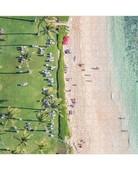 Chronicle Books Gray Malin Hawaii Puzzle