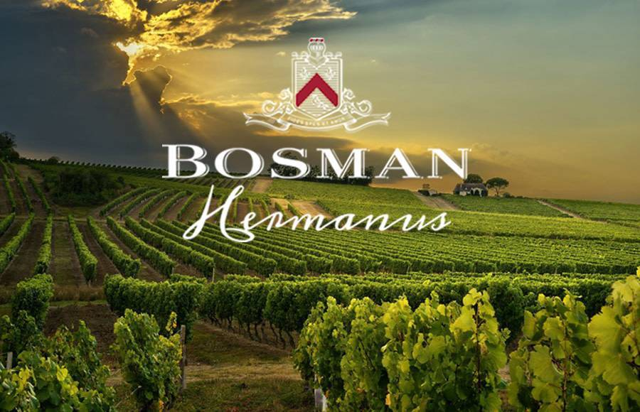 SATURDAY 27 OCT 2018 | Bosman Vineyards & De Bos Handpicked Vineyards South Africa Wine Tasting with Global Sales Manager Angela Jordaan