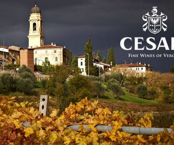 FRIDAY 30 NOV 2018 | Cesari Wine Tasting with Brand Ambassador Iris di Chicco from Valpolicella, Italy