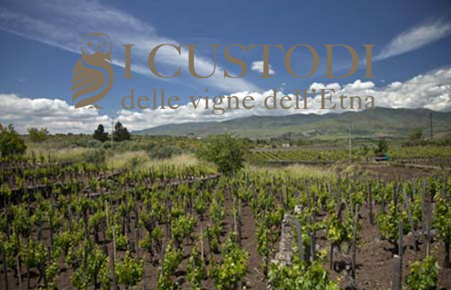 "THURSDAY 24 JAN 2019 | Sicily ""I Custodi delle vigne dell'Etna"" Tasting  Seminar w/Salvo Fonti"