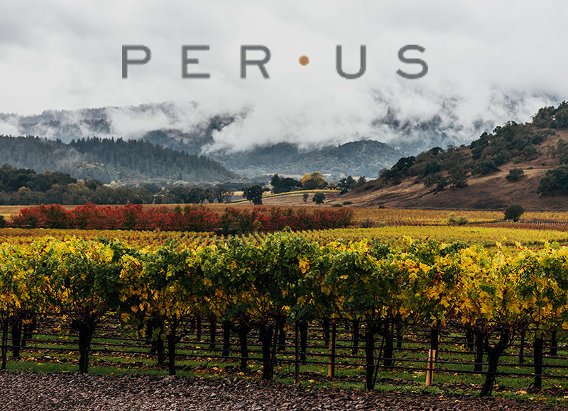 TUE 01 OCT | PerUs Wines | a Napa Valley Tasting | with Katya Kurtbek