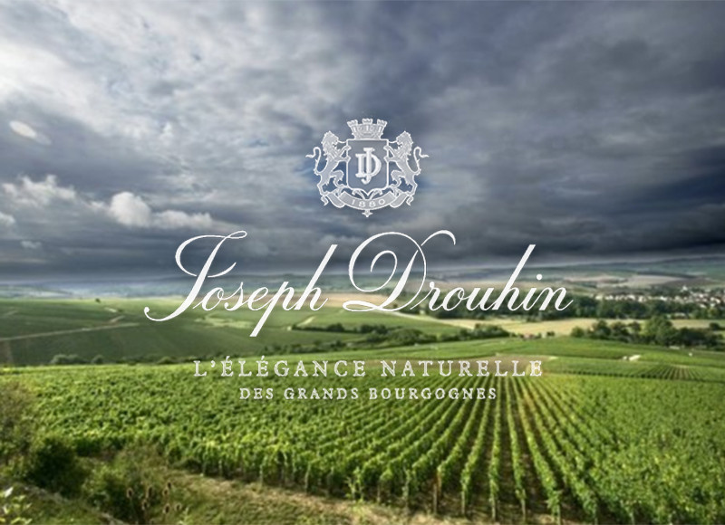 WED 06 NOV | Joseph Drouhin Tasting | w. Laurent Drouhin | SOLD OUT