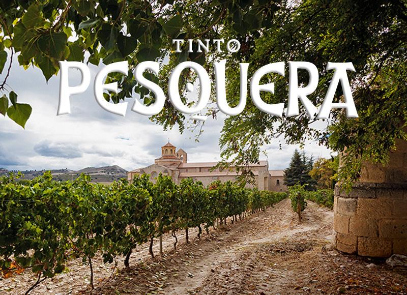 THU 13  FEB | Bodegas Tinto Pesquera Wine tasting | Spain
