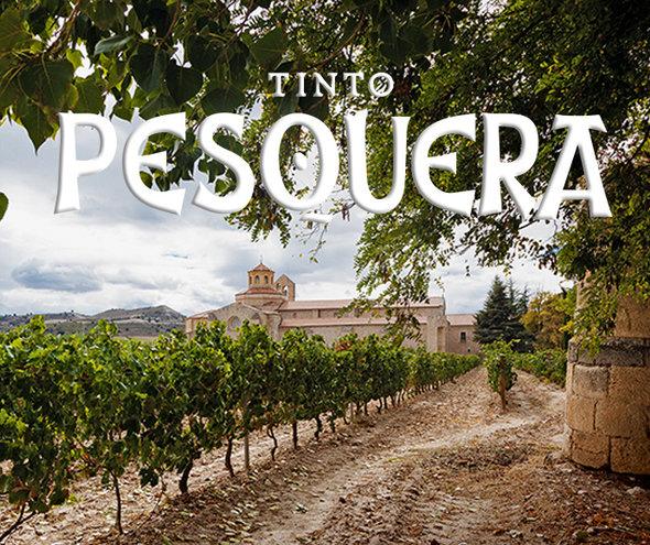 THU 13  FEB |Bodegas Tinto Pesquera Wine tasting | Spain