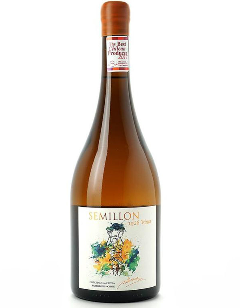 Maturana Wines 2019 Semillon, Colchagua Valley, Chile [Orange]
