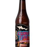 Dogfish Head Brewery Campfire Amplifier 6pk Bottle Beer