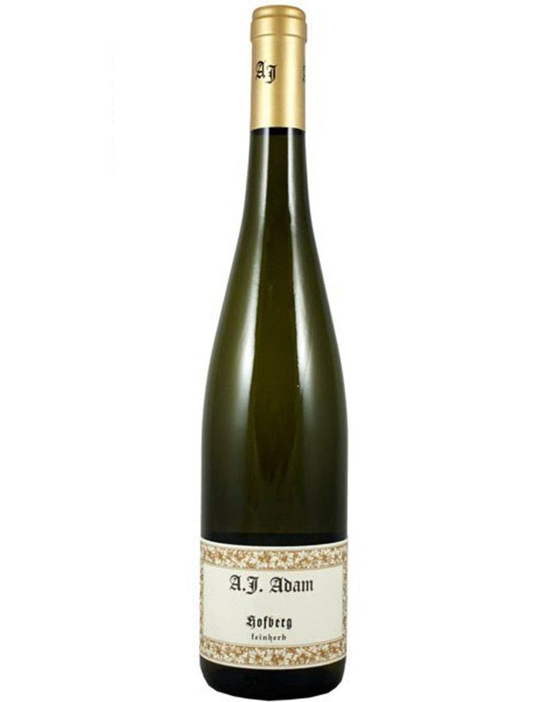 Weingut A.J. Adam 2016 Trocken Riesling, Germany