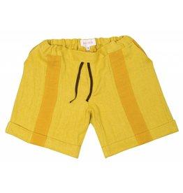 NY Pants Sun
