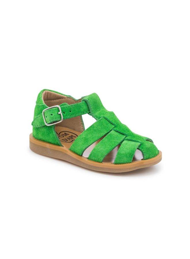 Poppy Chloro Sandal