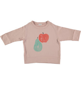 Picnik Apple Pear Sweater