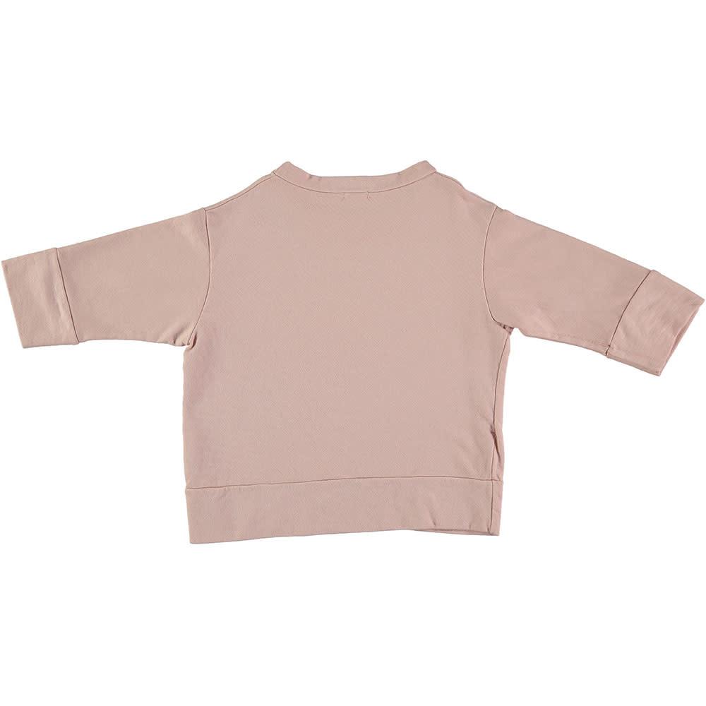 Picnik Apple Pear Sweater