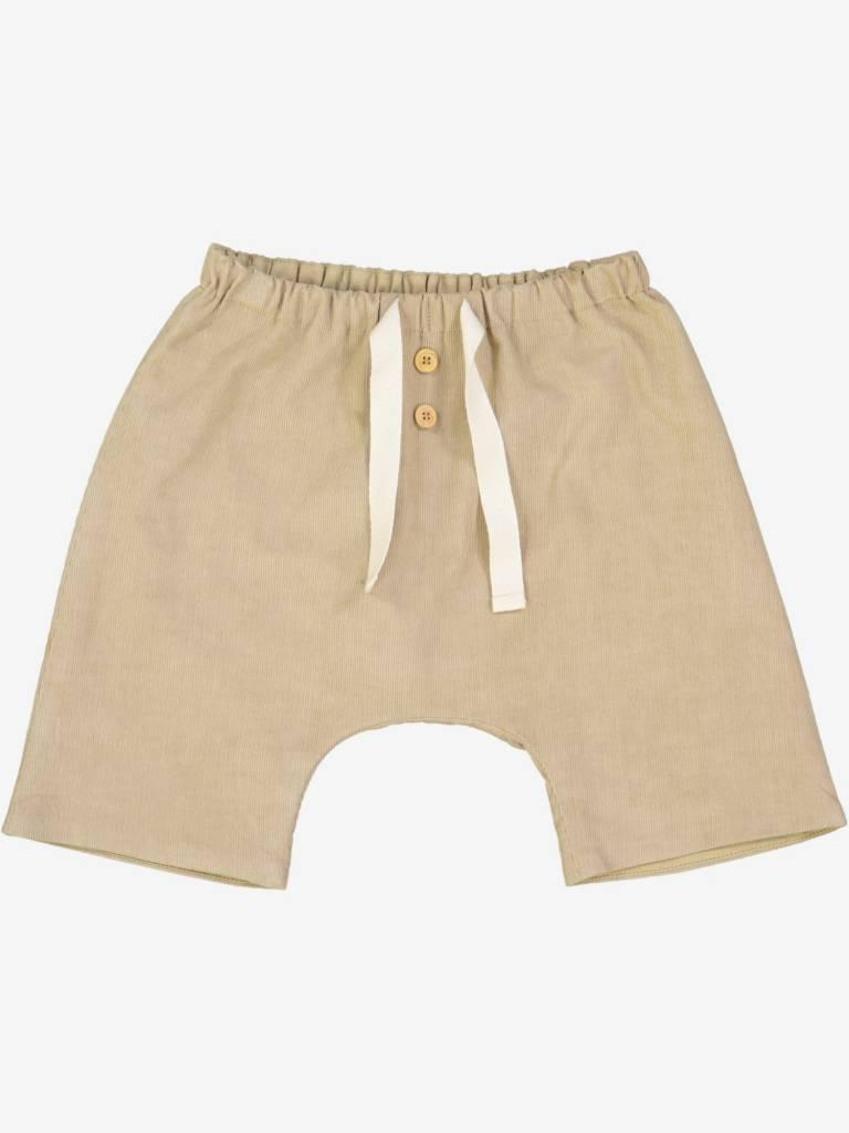 Petite Lucette Cappucino corduroy pants