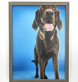 Chocolate Lab Blue - 5x7 Mini Framed Art