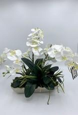 Symphonie Rectangle Orchid
