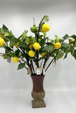 Creative Co-Op Lemon Tree Branch
