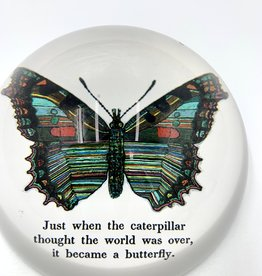Sugarboo & Co. Sugarboo Paperweight - Butterfly