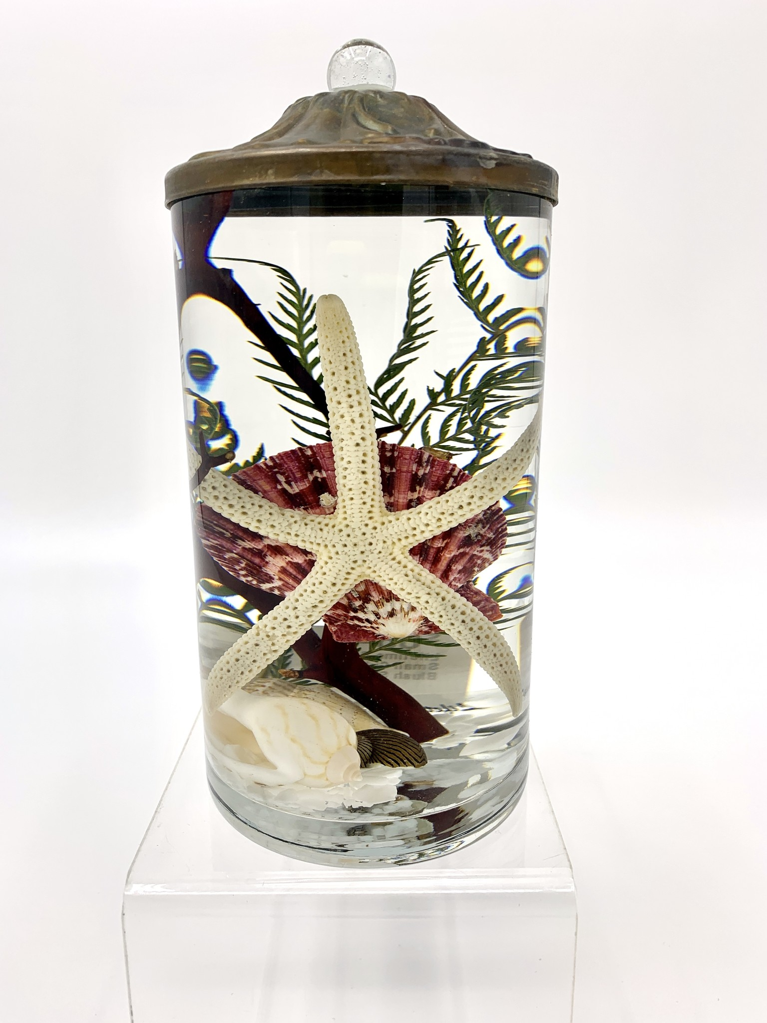 Lifetime Candle Small Cylinder - Blush Seashell