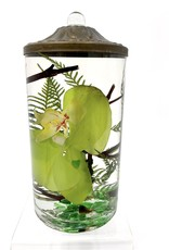 Lifetime Candle Small Cylinder - Green Orchid