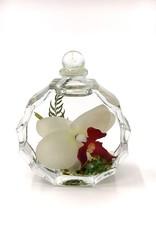 Lifetime Candle - White Orchid Sunburst