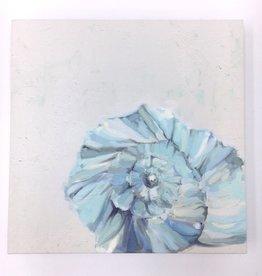 Splendid Seashell - 10x10 Canvas Art