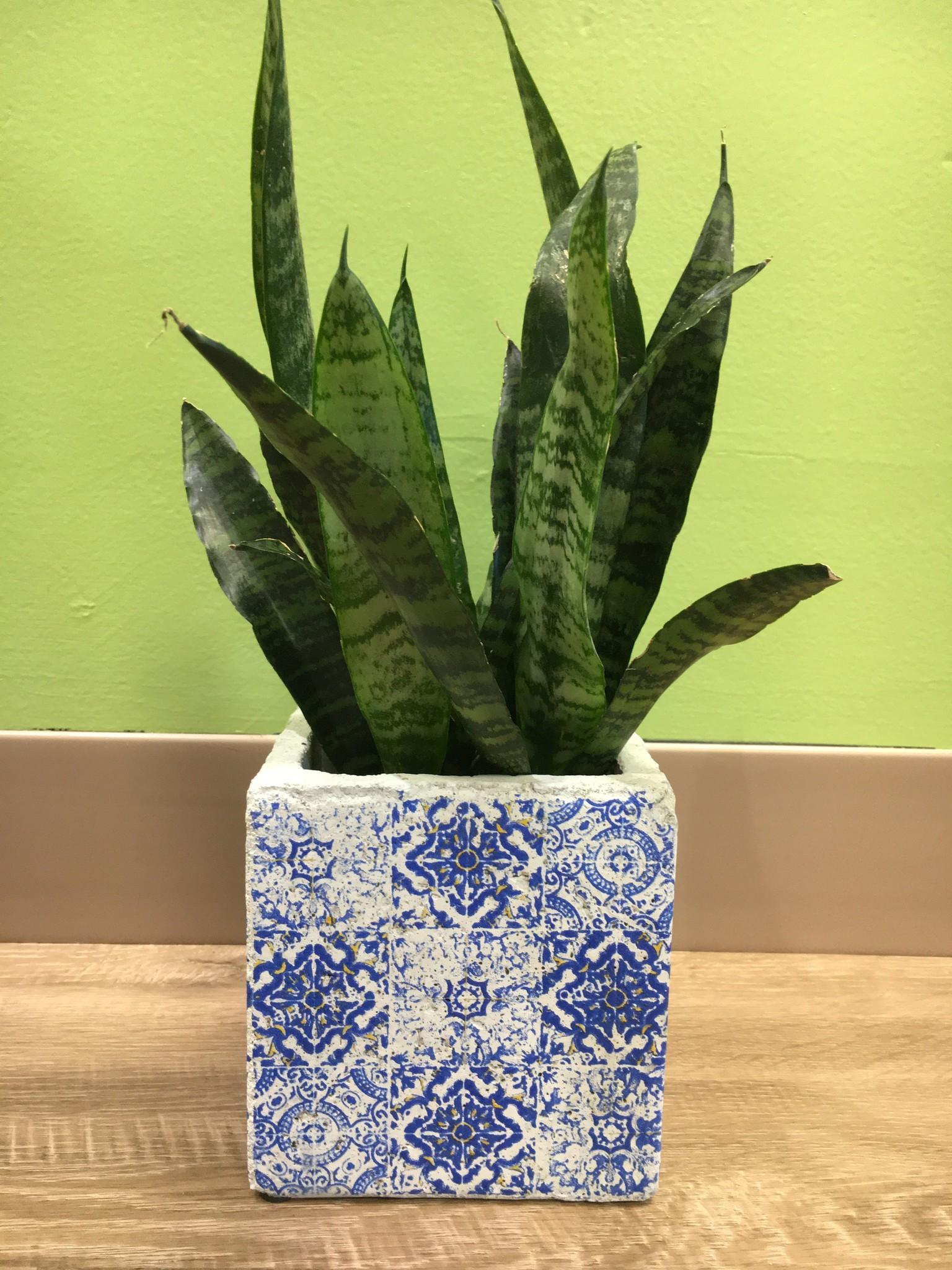 Creative Co-Op Blue Earth Ceramic Planter Pots