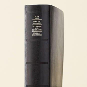 SCRIPTURE SIMULATED INDEX LARGE