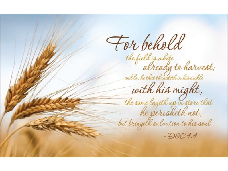 CHG TEMPLE RECOMMEND HOLDER THE GREAT HARVEST