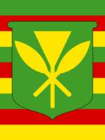 Hawaiian Kanaka Maoli 3x5 Flag