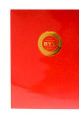 BYUH Portfolio Red Gold Imprint