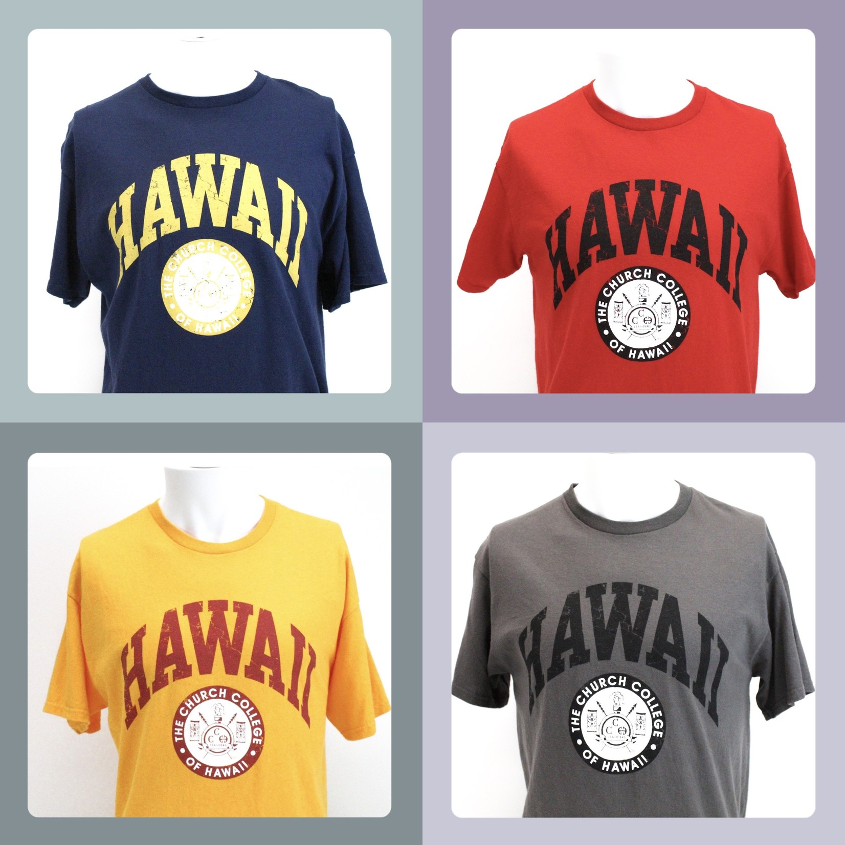 CCH Church College of Hawaii Seal DISC -