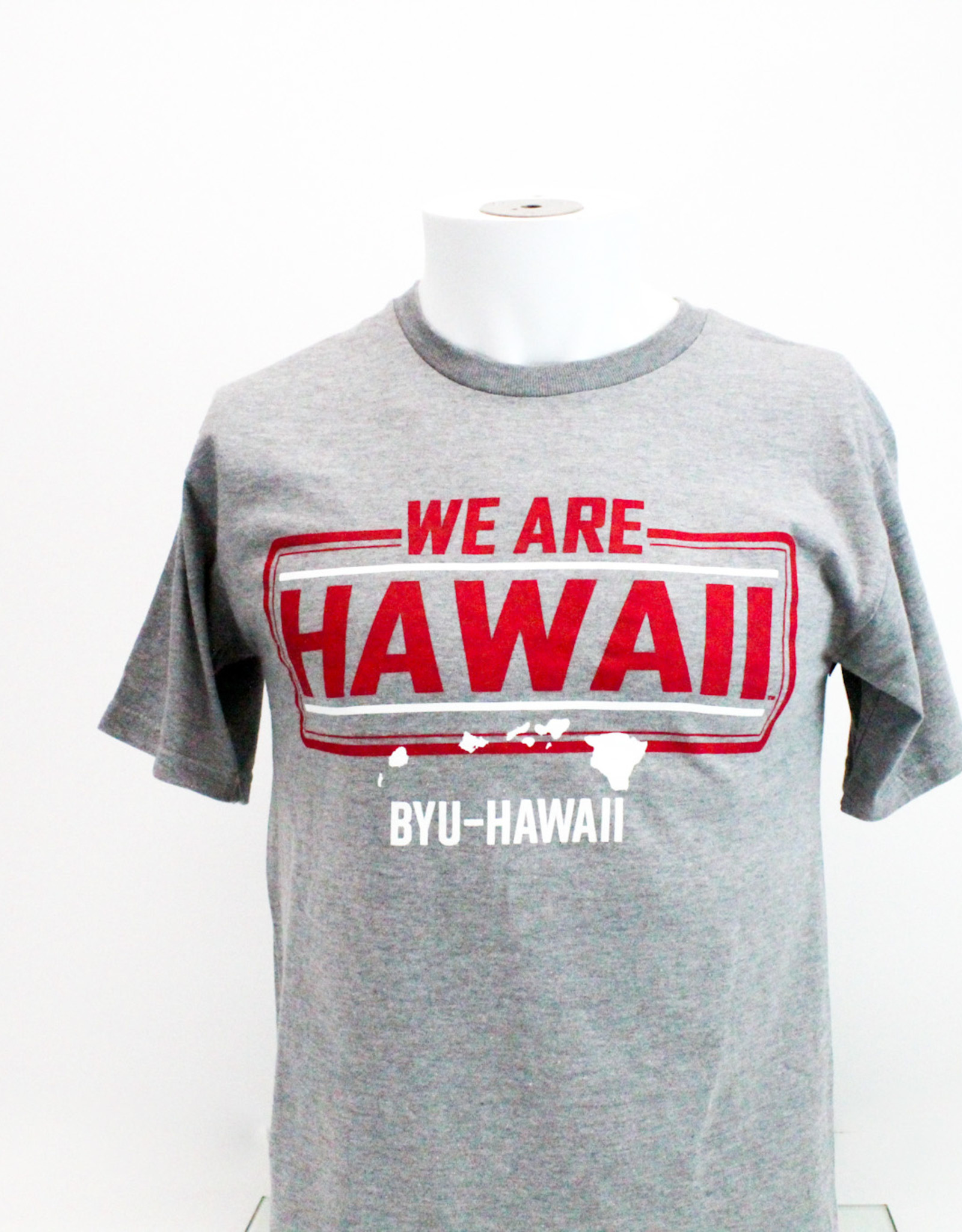 We are Hawaii Tee