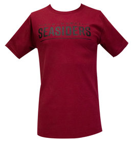 Clearance -  BYU-Hawaii Seasiders Beefy-T