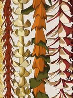 Mayan Llanera Illustrations LEI DAY IN HAWAII NEI PRINT 11X14