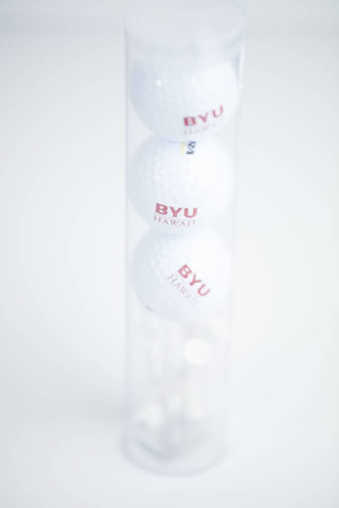 DISC BYUH GOLF BALLS WILSON