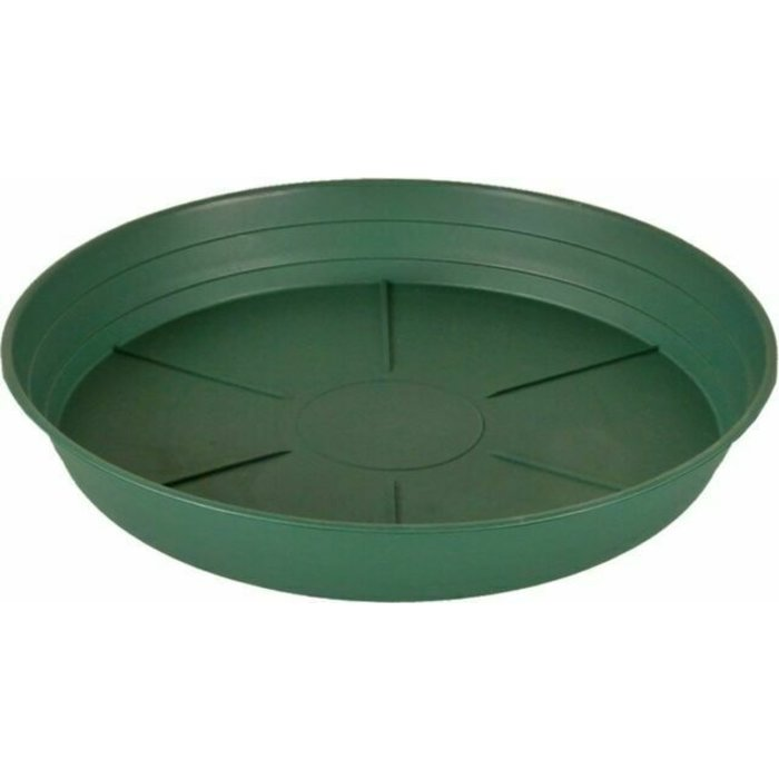 "Green Premium Saucer 8"", pack of 25 single"