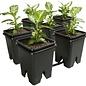 "Grow Flow 5-Gal Expansion Kit 3/4"" 6 pot, 5 Gal"