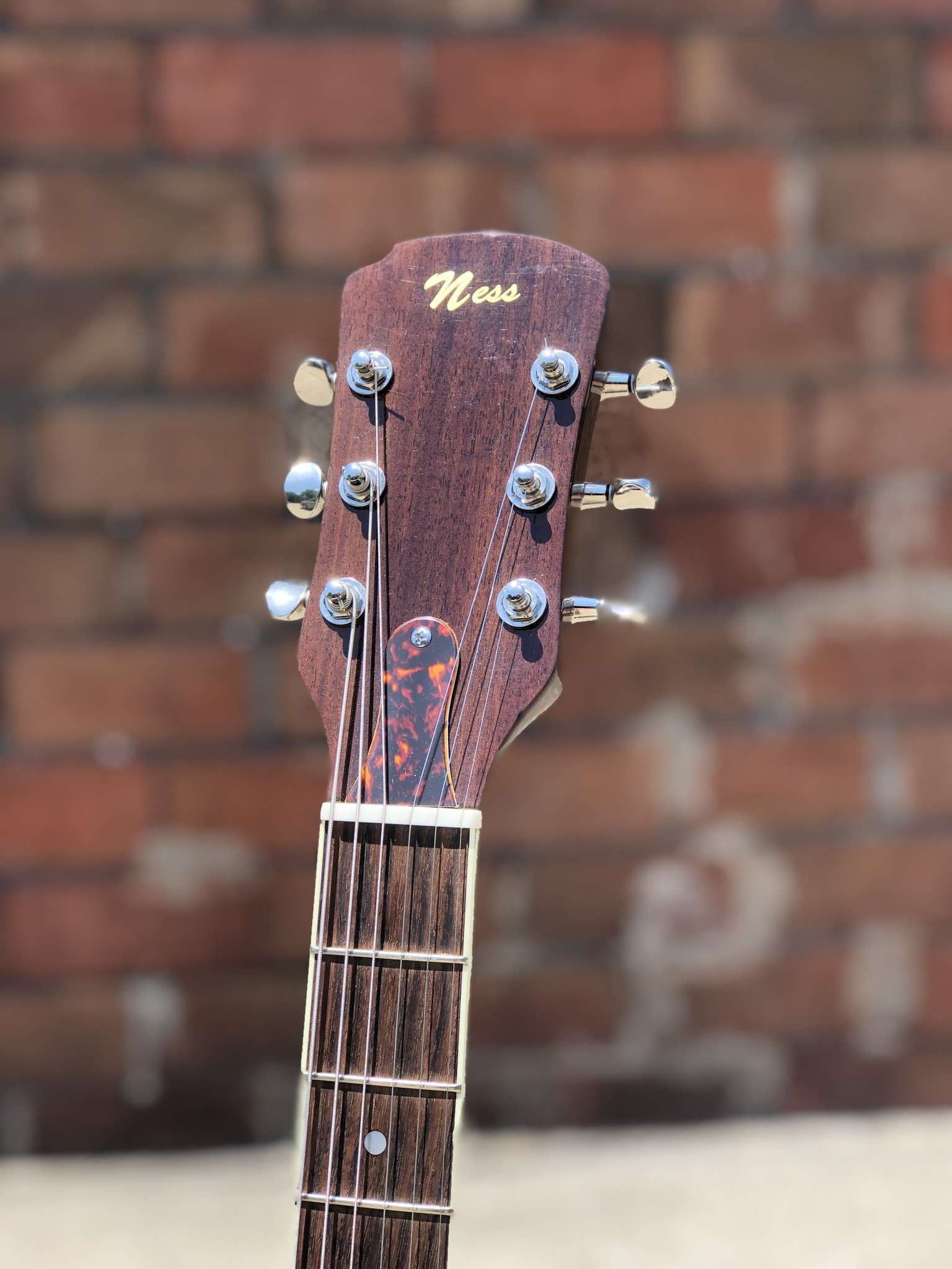 Ness Lutherie Hilldale-5