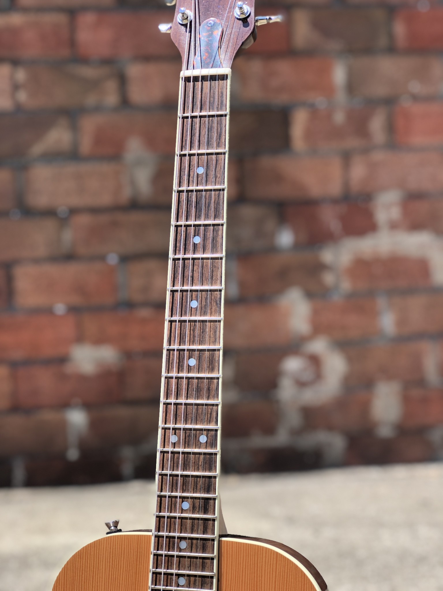 Ness Lutherie Hilldale-4